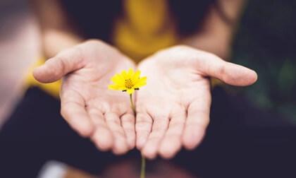 Mano con flores para representar el Flourishing