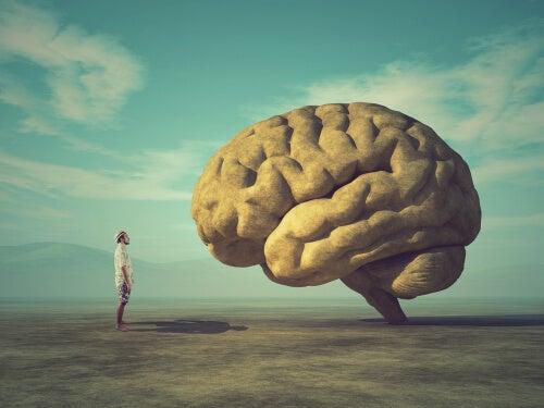 Tenemos el poder de esculpir nuestro cerebro