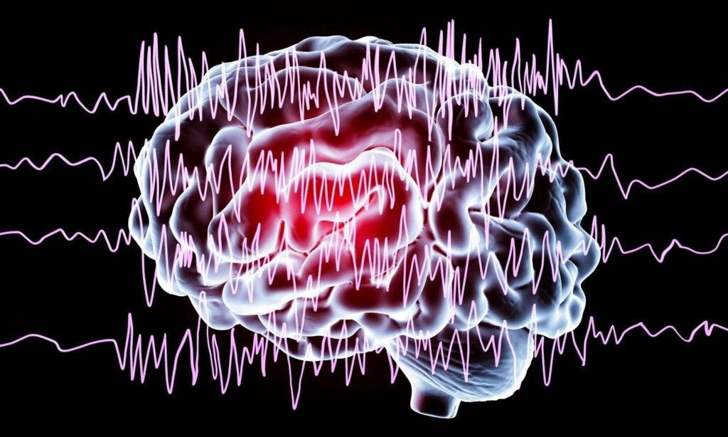 ondas cerebrales del claustro cerebral