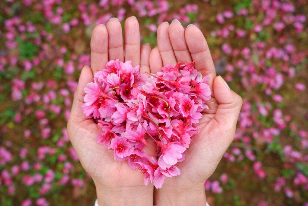 Mano con un corazón de flores rosas simbolizando las ganancias de los inversores emocionales
