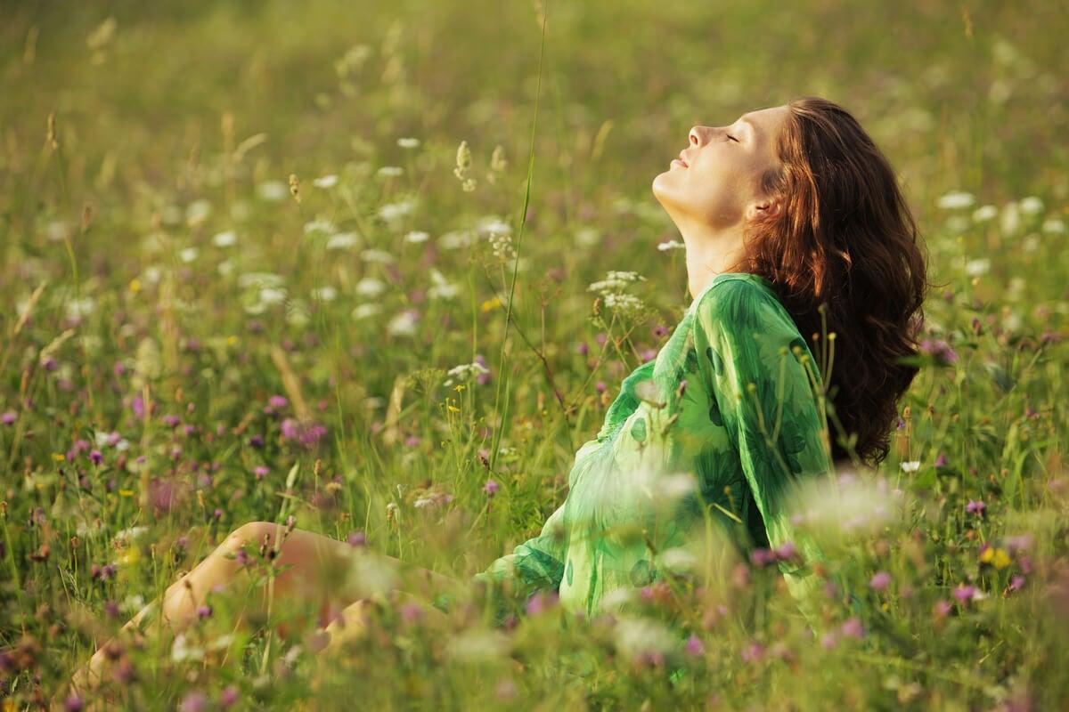 Valores y emociones: las fuerzas que nos guían en la vida