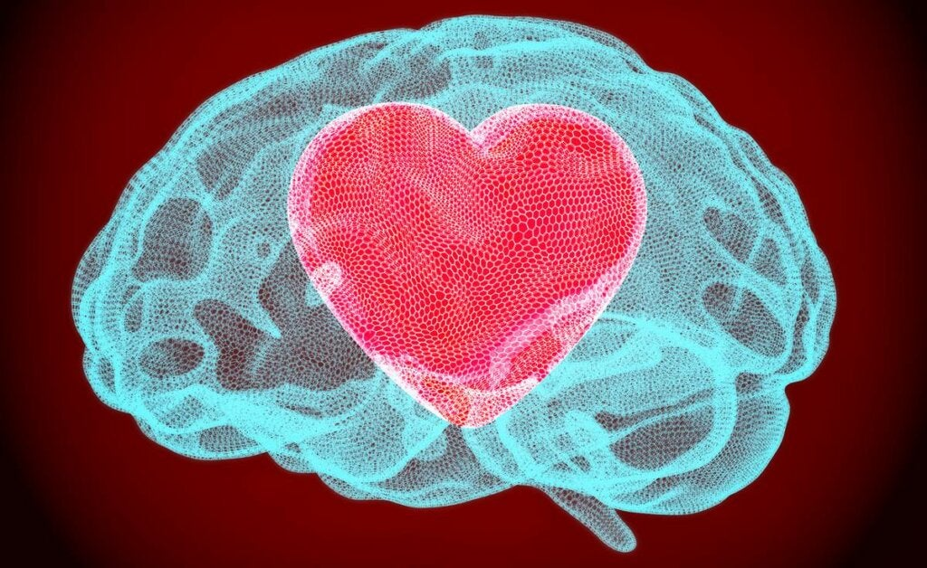 cerebro con corazón para representar cómo es el cerebro sinestésico