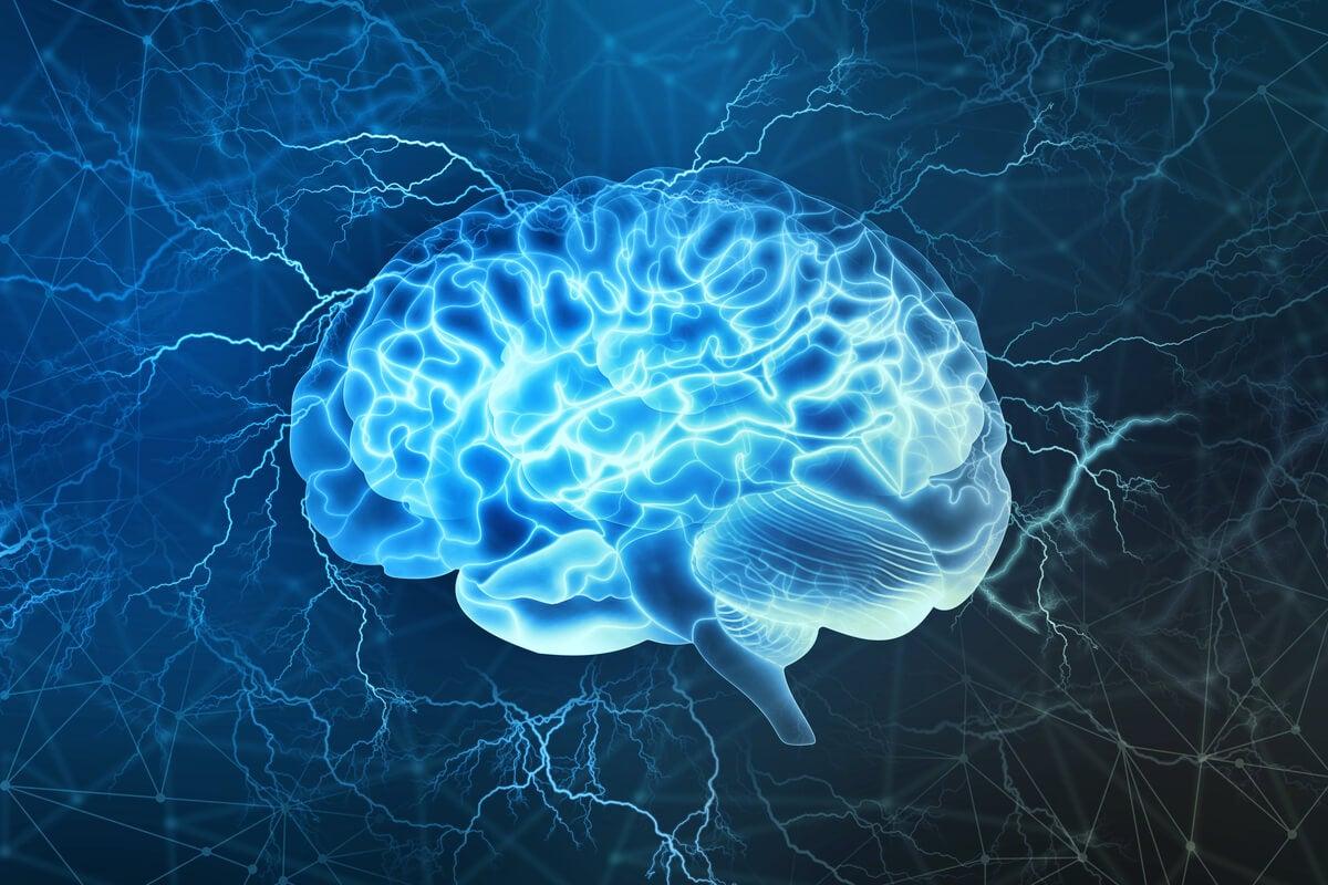 Noradrenalina, una molécula clave en el comportamiento y las emociones