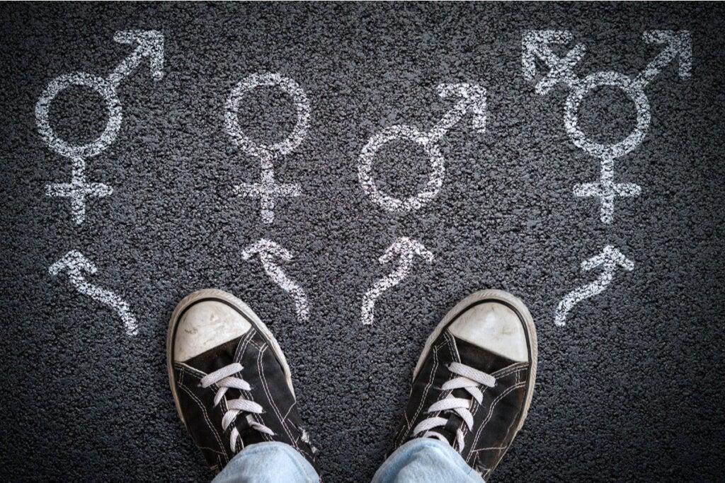 Diferentes tipos de géneros