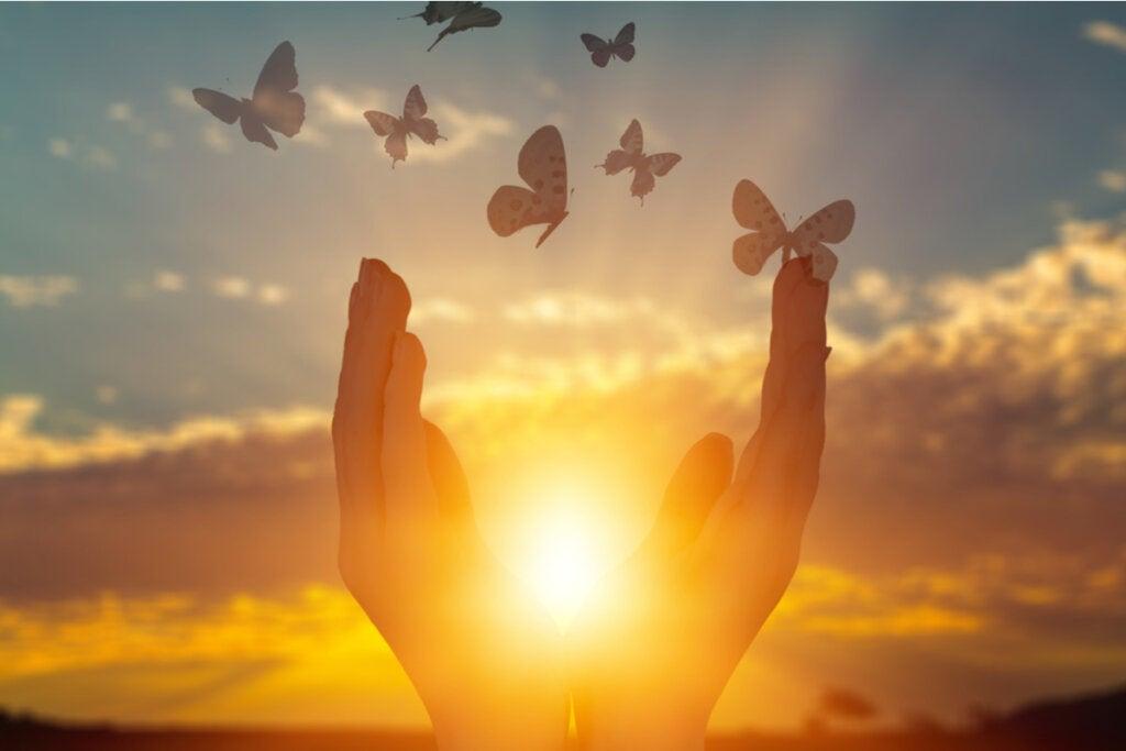 Manos con una luz y mariposas volando para representar la generosidad emocional