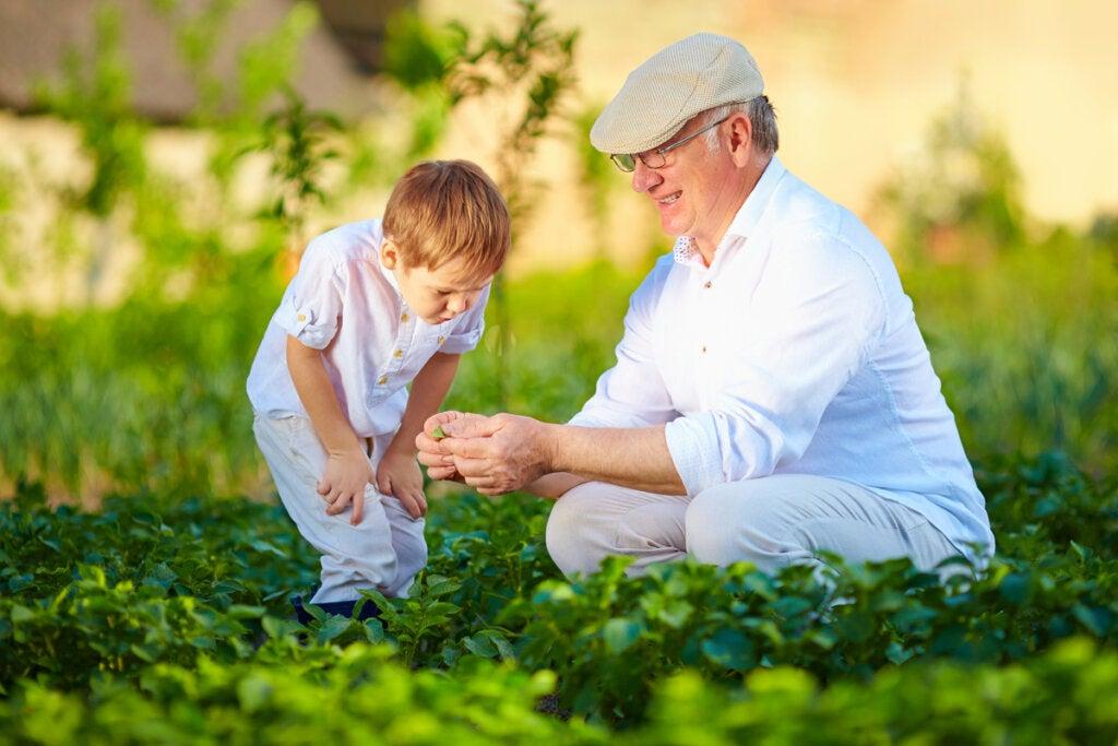 escena simbolizando cómo los abuelos ayudan a desarrollar el talento de los nietos